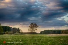 krajobrazy141
