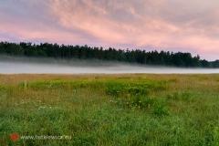 krajobrazy148