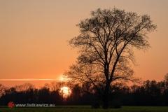 Nadwiślański zachód słońca