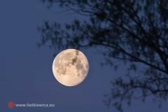 Nadwiślański księżyc