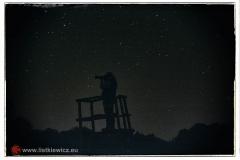Noc, a nocą gdy nie śpię... Rokita (fot. Rafał Pajestka)