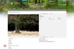 """XI edycja konkursu fotograficznego firmy Bayer, """"Ekologia w obiektywie - życie w lesie"""""""